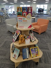 Dog registration display, Shirley Library