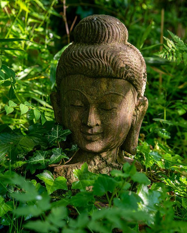 DSC_6100_Buddha_10.jpg