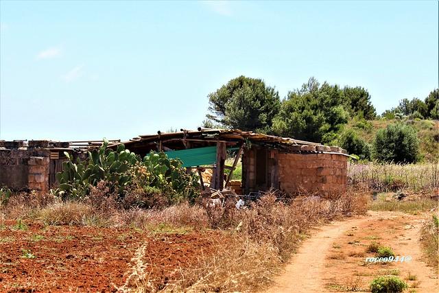 Capanno - Lodge