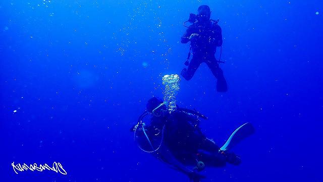 青い海を堪能しました。