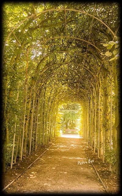 Botanical Garden, Cologne!