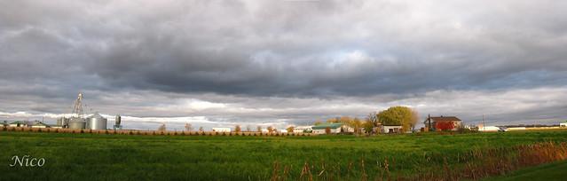 Panoramic - Approaching storm on the farm, img-4375 - 77 L'approche de la tempête à la ferme.