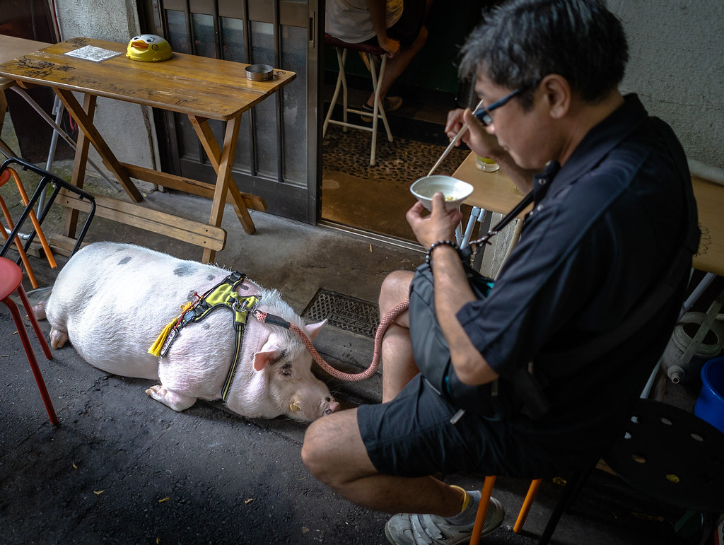 Tokyo - Walking with Peppa Pig