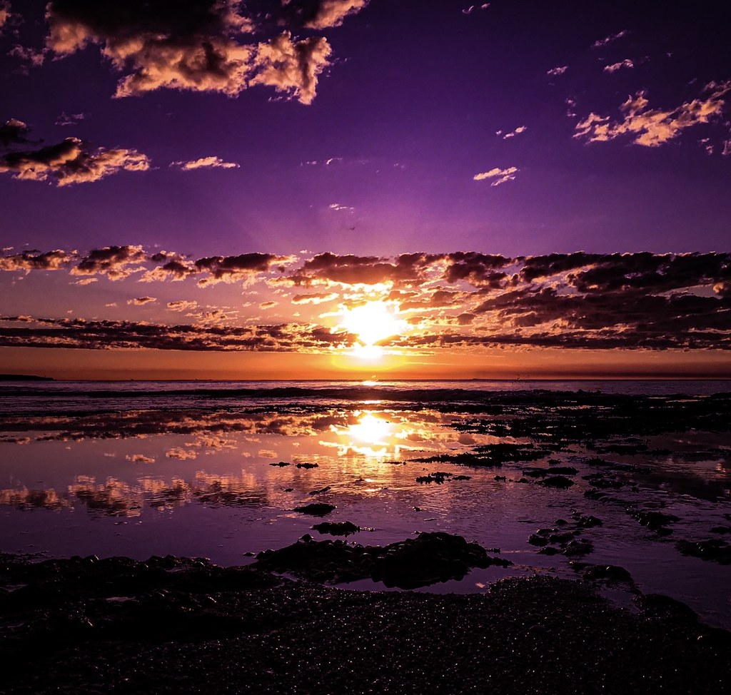 … magically velvet … Cronulla, NSW.Australia