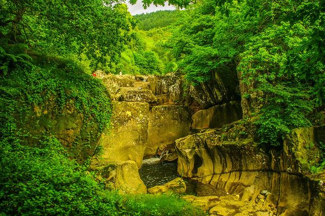 Bracklinn Falls and Greenery