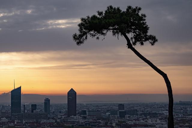 Sunrise in Lyon