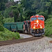 Steve Hardin posted a photo:August 29, 2020: A fairly clean Canadian National Railway ET44AC GE engine, along with a CSX AC4400CW, plus another CN ET44AC engine pull CSX Freight Train Q541 (Cincinnati, OH-Waycross, GA) southbound at Rydal, Ga on the K&A Main of the CSX Etowah Subdivision. Note the *Aboriginal Relations Sticker* on the engine cab.Watch video of the train here:www.youtube.com/watch?v=8Vp_EZr3tTE