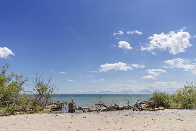 Beach @ Lynde Shores Conservation Area