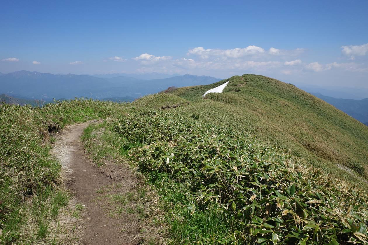 谷川岳〜一ノ倉岳〜茂倉岳 夏の稜線登山