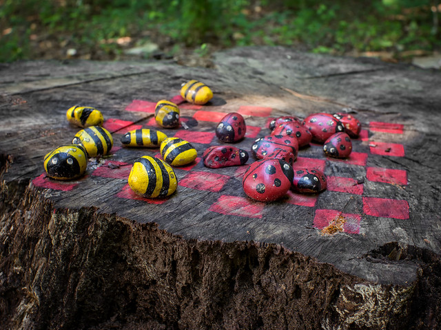 Bees vs. ladybugs