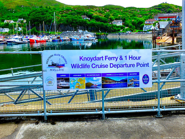 Scotland North West Highlands Mallaig the dock for the Knoydart ferry and 1 hour wildlife cruise 19 June 2021 by Anne MacKay