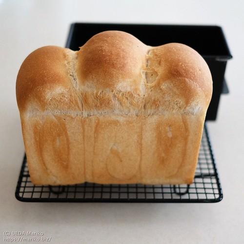 苺ジャム酵母の牛乳食パン 20210730-DSCT1315 (2)
