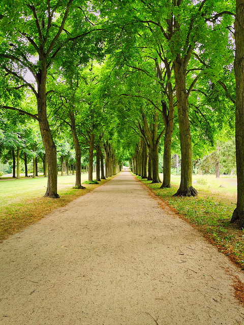 Potsdam Sanssouci - Schlosspark