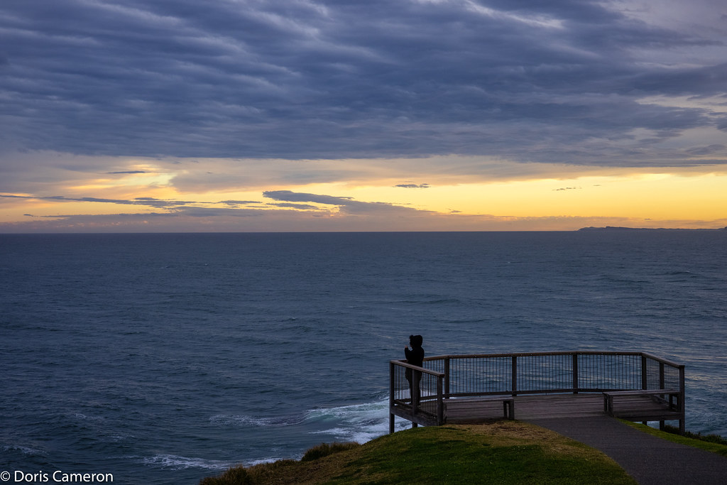Lookout - Tacking Point Lighthouse