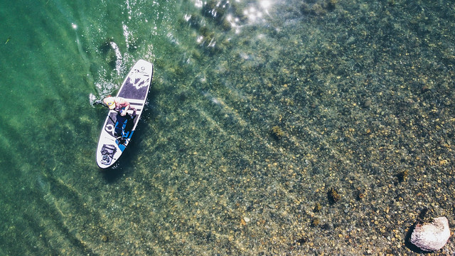 Paddleboard View from Above | Tenants Harbor Maine