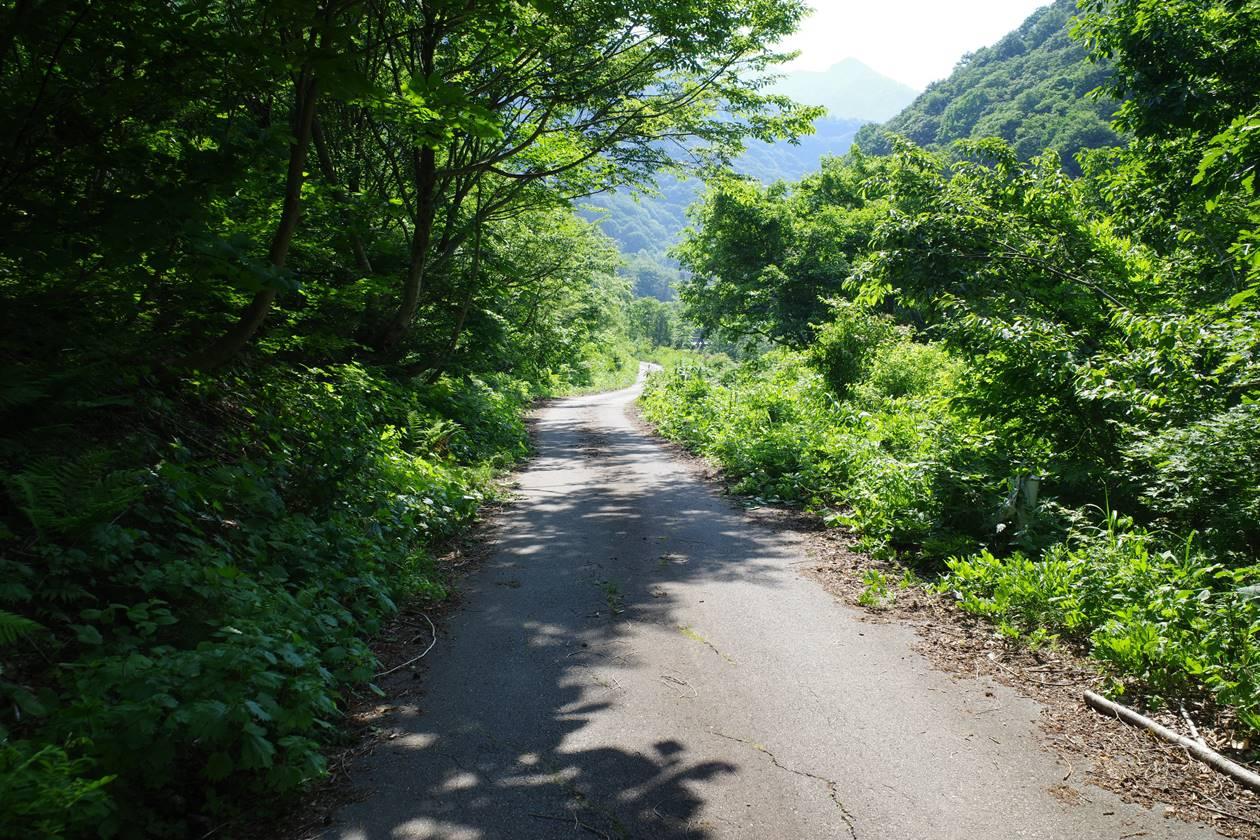 茂倉岳登山口から土樽駅へ