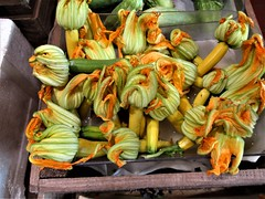 Topsham Courgette Flowers