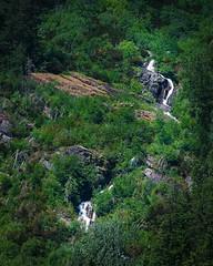 Chasing waterfalls. #glaciernationalpark #montana #nikon