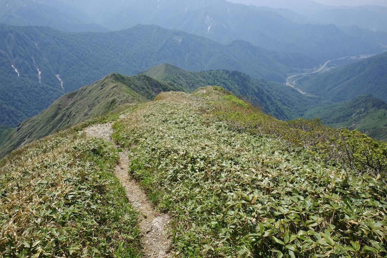 茂倉岳から土樽へ下山(茂倉新道)