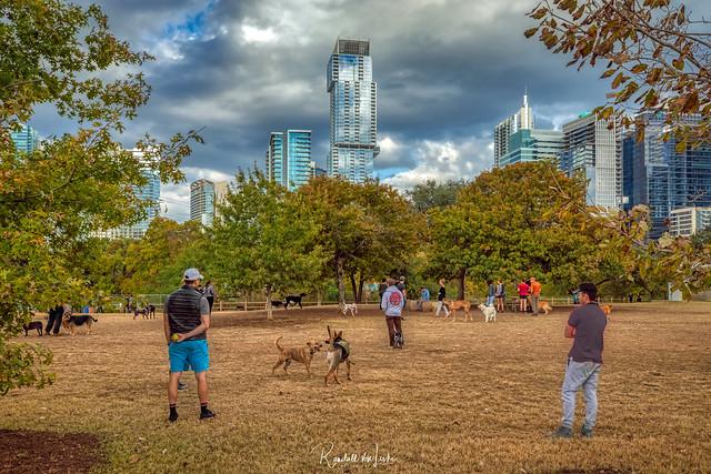 Auditorium Shores Dog Park, Austin, Texas