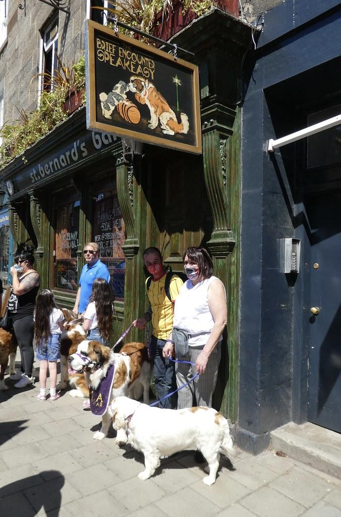 St. Bernard dogs at the St. Bernard Bar, Stockbridge, Edinburgh