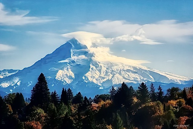 'Mount Hood'