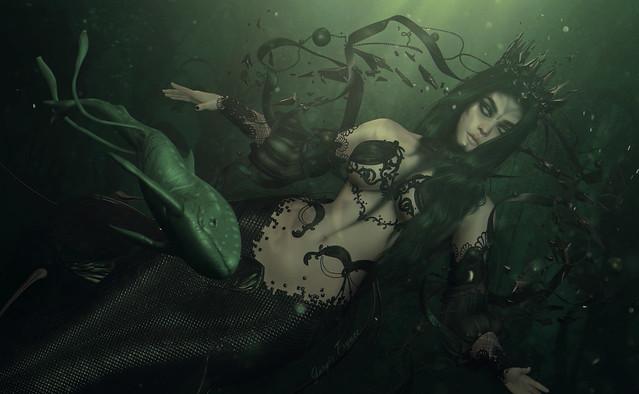 The Black Siren