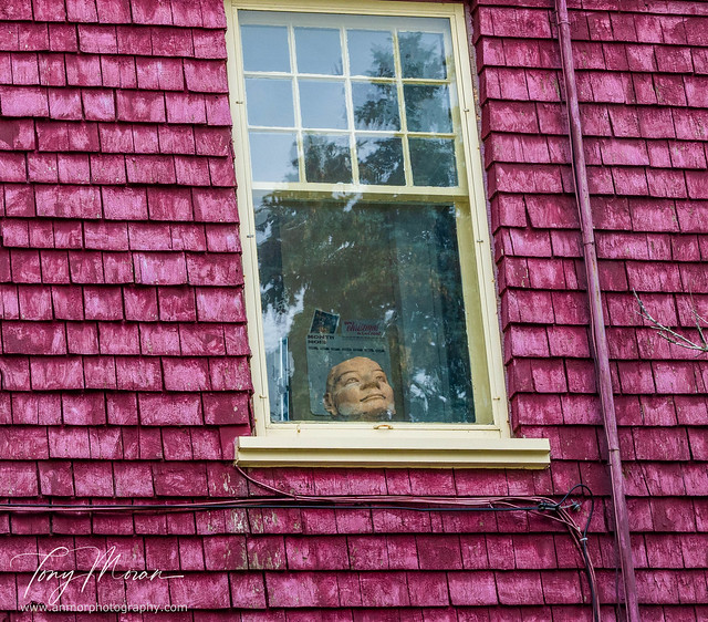 The face at the attic window