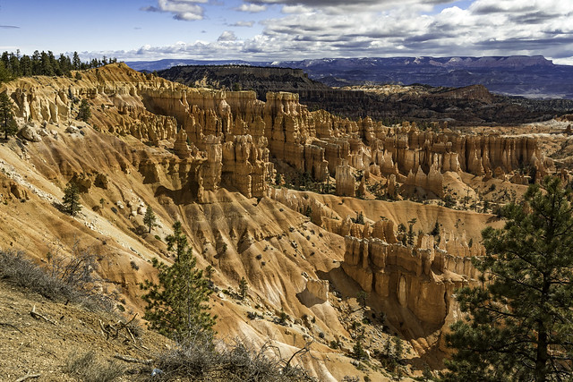 Hoodoos to the East of Sunset Point in Bryce Canyon NP, Utah