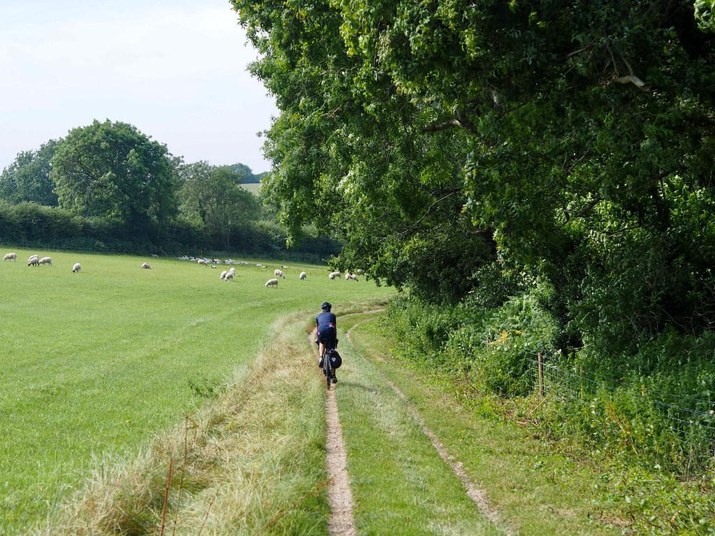 on the tennyson trail