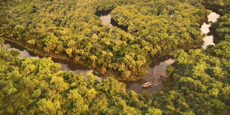 Jungle Cruise River