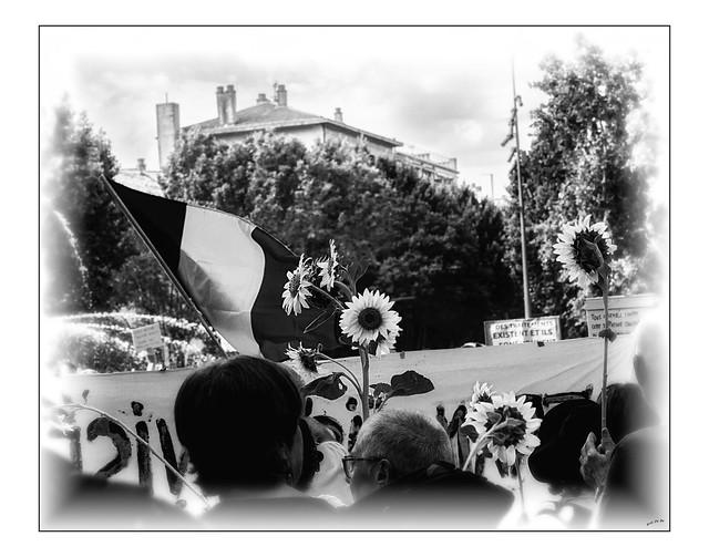Le drapeau, le tournesol, mais pas le vaccin... /  The flag, the sunflower, but not the vaccine...