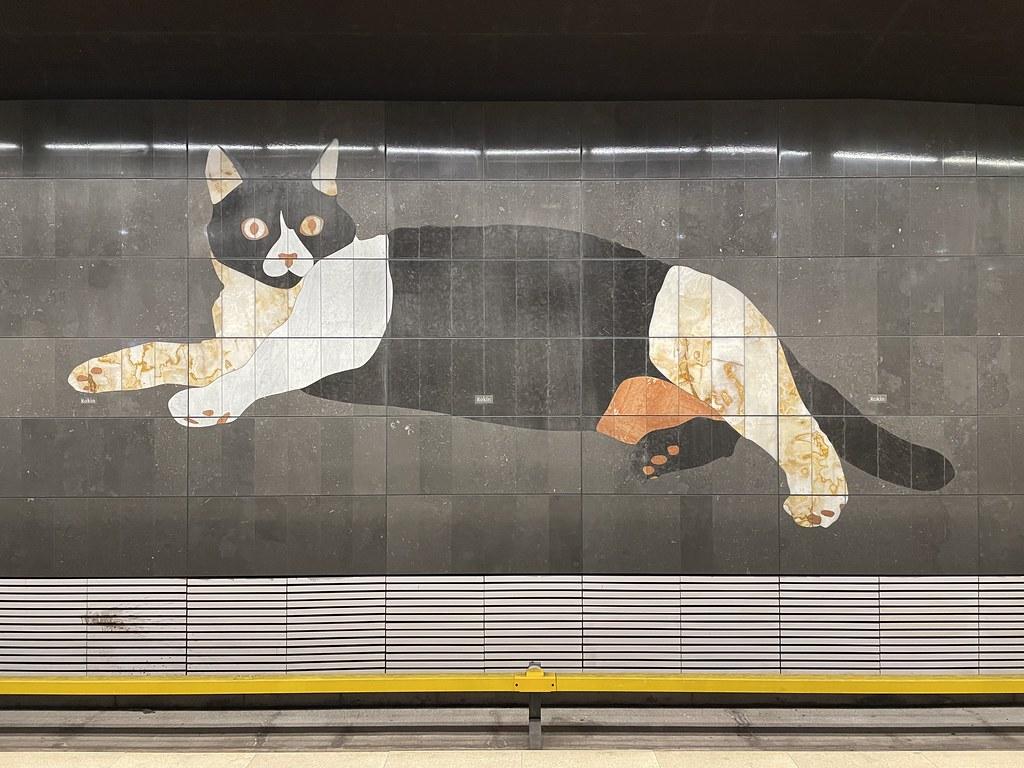 Big cat in the Rokin metro station