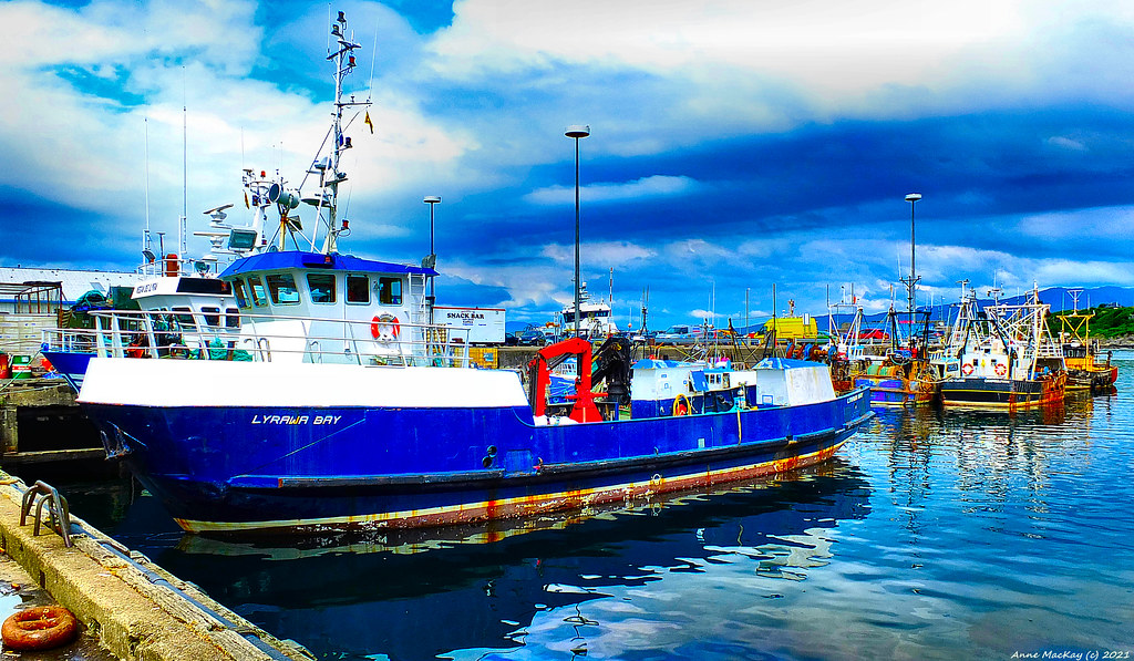 Scotland North West Highlands fishing trawlers docked in Mallaig 19 June 2021 by Anne MacKay