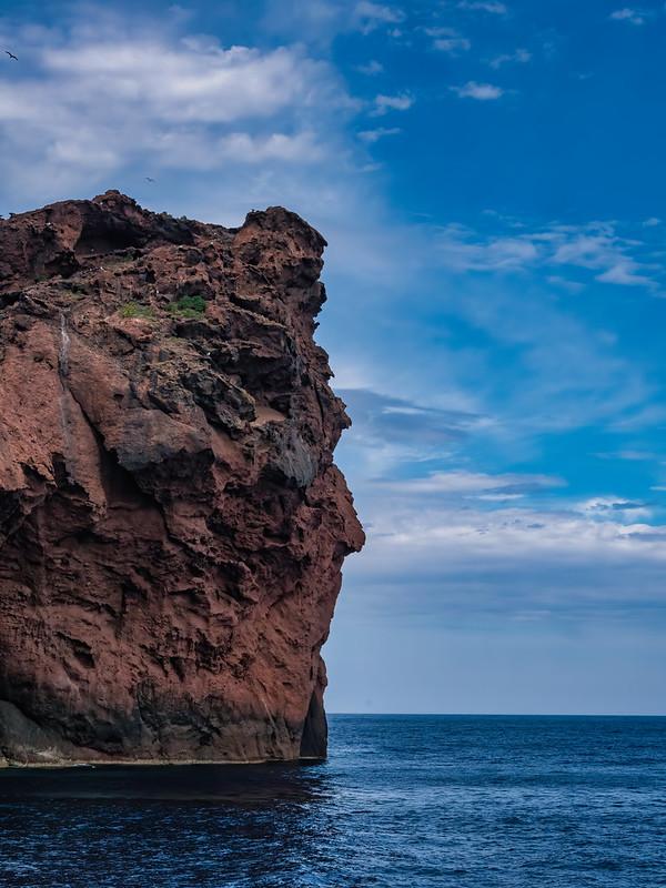 Pareidolie : le regard perdu vers l'horizon... 51349172576_29a525cc7f_c