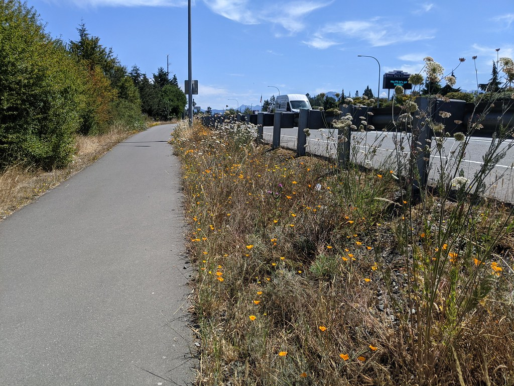 Olympic Discovery Trail, east from Port Angeles.