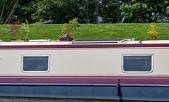 Bonsai Barge