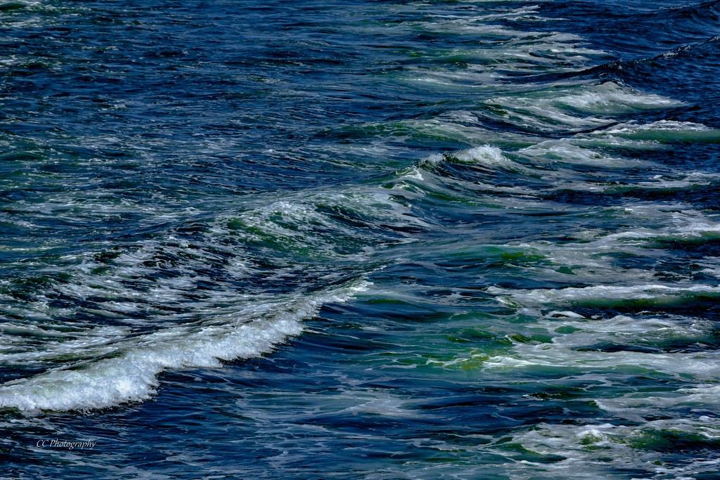 Mesmerizing in Motion - The Ocean's own Artwork
