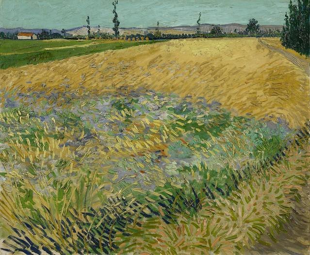 Vincent van Gogh - Wheatfield [1888]