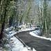 Strada d' inverno