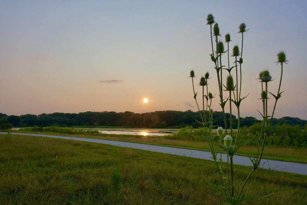 Evening sun over the landscape