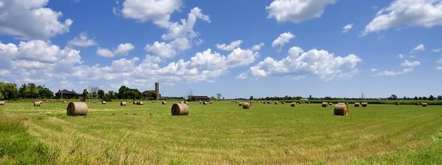 Rural panorama with rotobales, Halton Hills, Ontario.