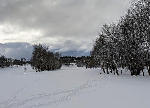 Balbirnie Golf Course Under Snow