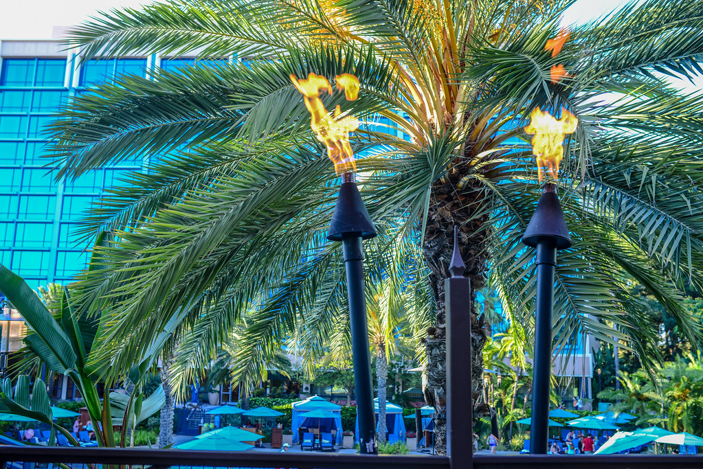 Tangaroa Terrace torches