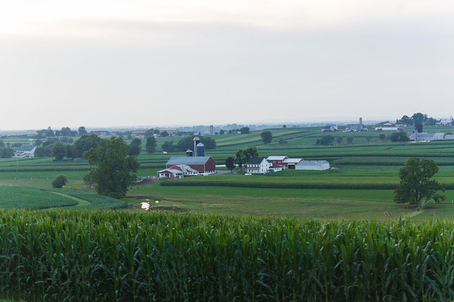 Amish 5450 Jul 13 2021