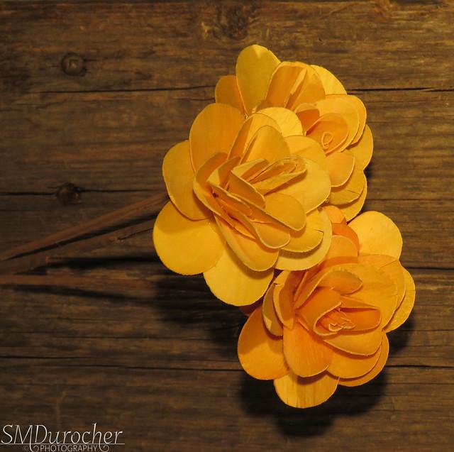 20210801 Wood Flowers c