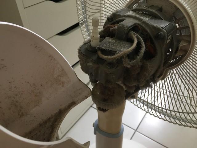 大同電扇馬達上頭,累積十年的驚人灰塵量