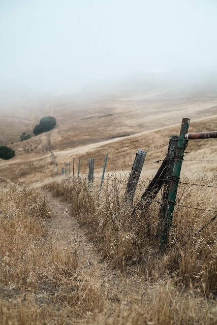 Vargas Plateau, Fremont, California