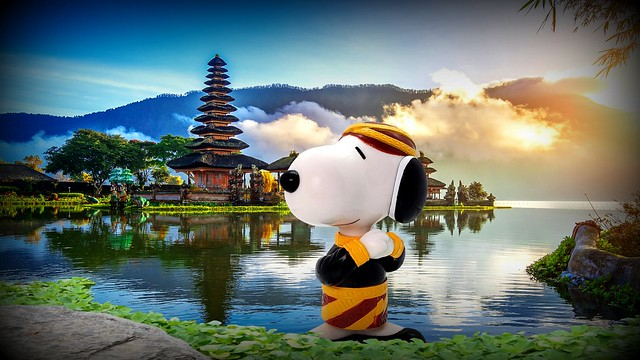 Hello, Bali! - Bijou Planks 213/365