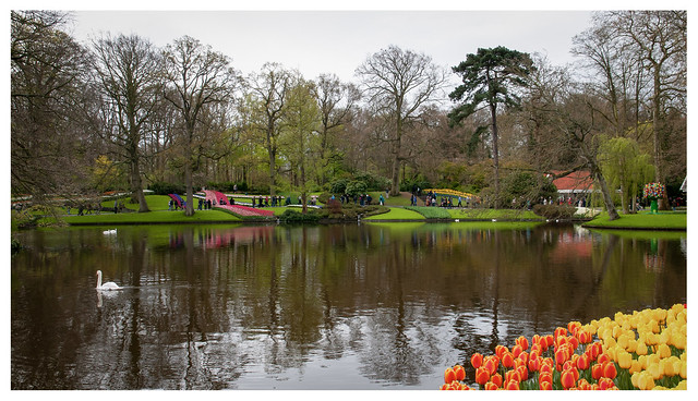 Parco di Keukenhof 3